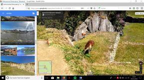 Lamas in den Anden_2.jpg
